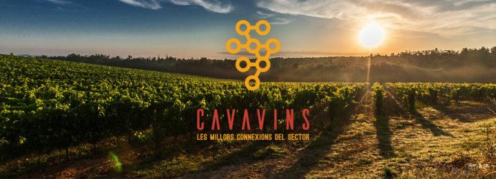Cavavins