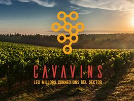 Cavavins.es
